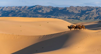 Special Trips to Mongolia